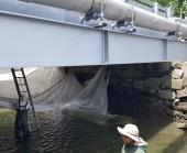 commercial bridge painting