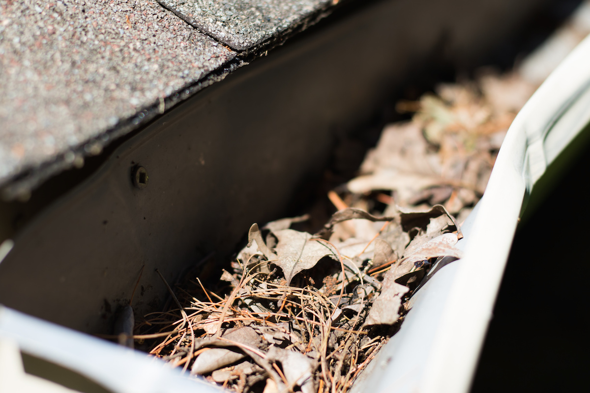 gutter cleaning in Westchester