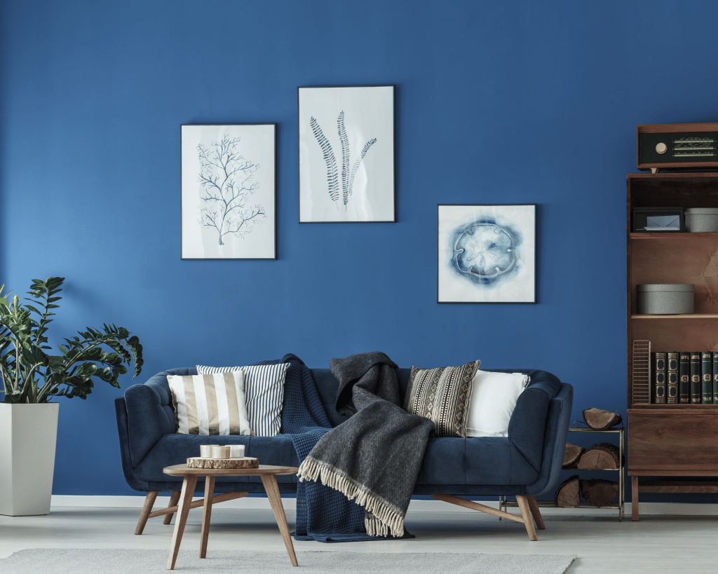 dark blue wall with a matching blue couch and three photos on the wall with sea creatures